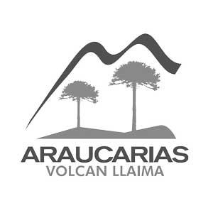 Sky-Araucaria